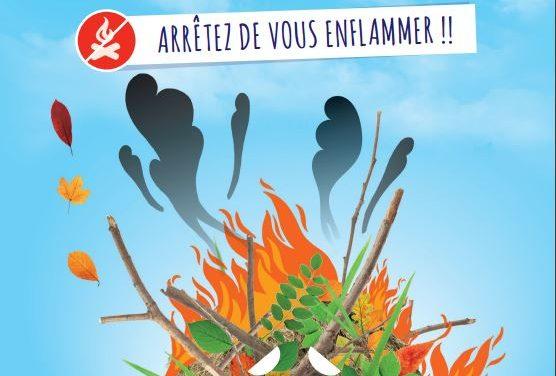 Interdiction de brûler les déchets verts