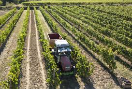 Soutien à la viticulture