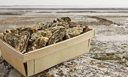 Des huîtres sous la halle  de Pellegrue le dimanche